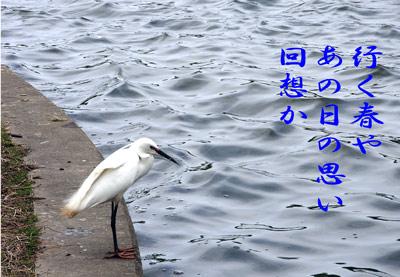 DSCN7571.jpg