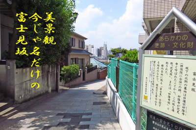 IMG_0311.jpg