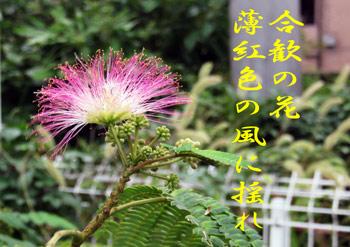 IMG_2102.jpg
