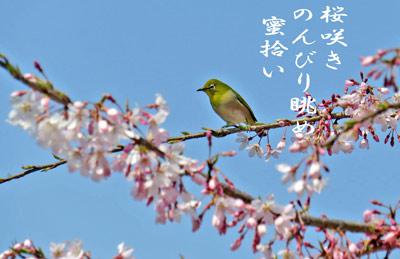 IMG_3280.jpg