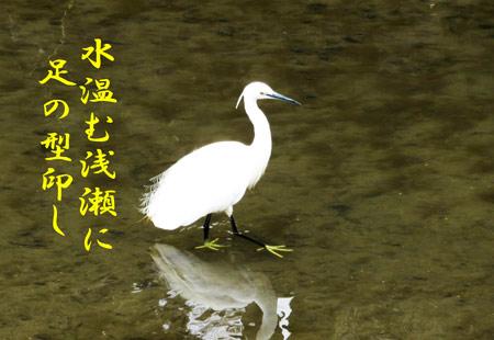 IMG_4576a.jpg