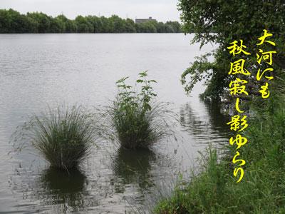 IMG_5682.jpg