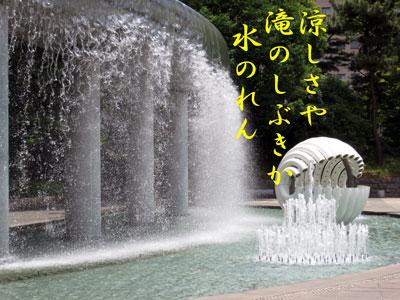 IMG_6943.jpg
