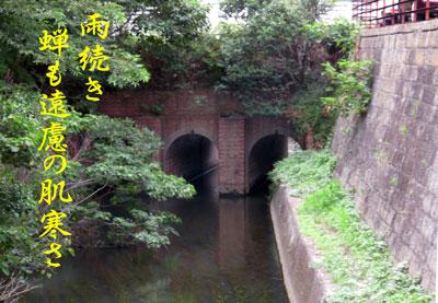 IMG_8291.jpg