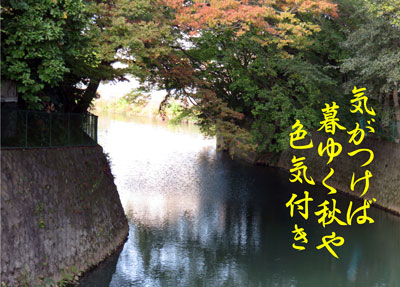 IMG_9692a.jpg