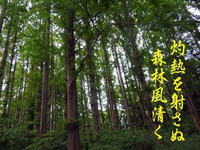 DSCN1492.jpg