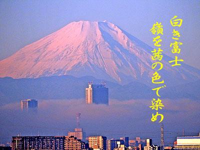 DSCN2100a_1.jpg