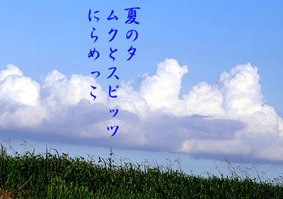IMG_0476.jpg